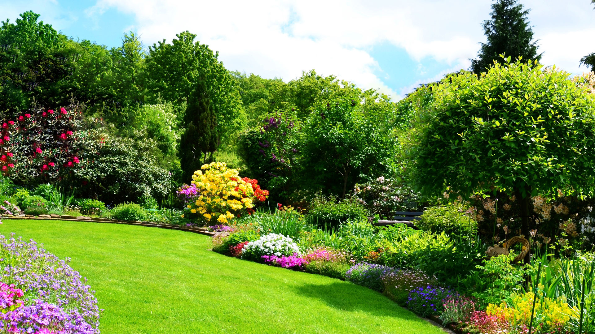 About Our Lawn Care & Landscaping Company   All Pro Lawns Inc